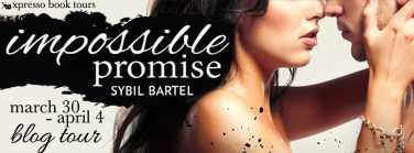 Impossible Promise Tour Banner