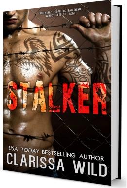 Stalker Cover 3D