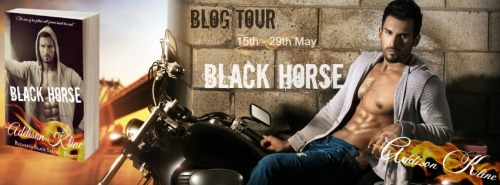 Black Horse Blog Tour Banner