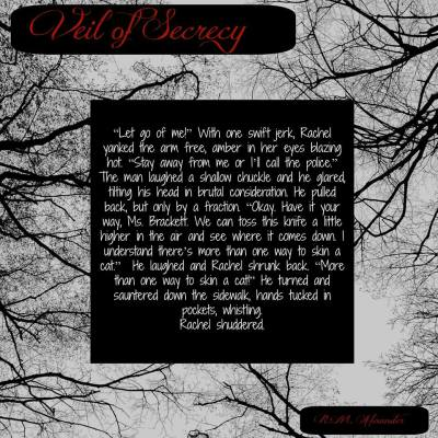 Veil of Secrecy Excerpt 2