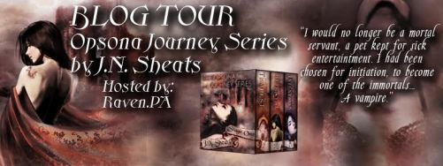 Opsona Journey Series Stage 1 Blog Tour Banner