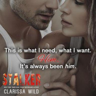 Stalker Teaser 5