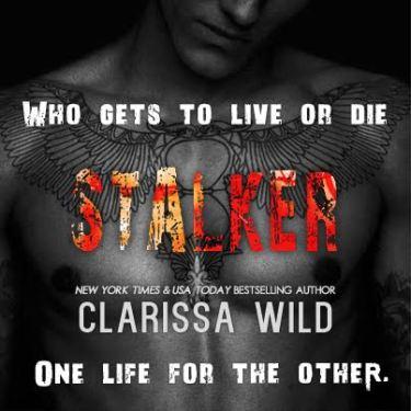 Stalker Teaser 9