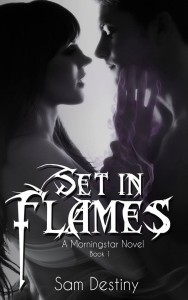 Set in Flames Cover