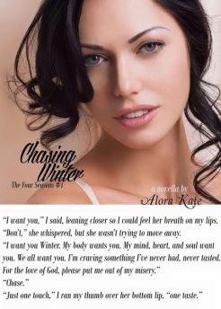 Chasing Winter Teaser 2