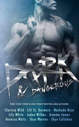 Dark & Dangerous Cover