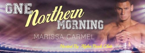 One Northern Morning Banner