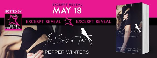Je Suis a Toi Excerpt Reveal Banner